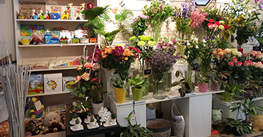 Rayon jeux pour enfants de la boutique de Fleurs à Puisserguier (34)